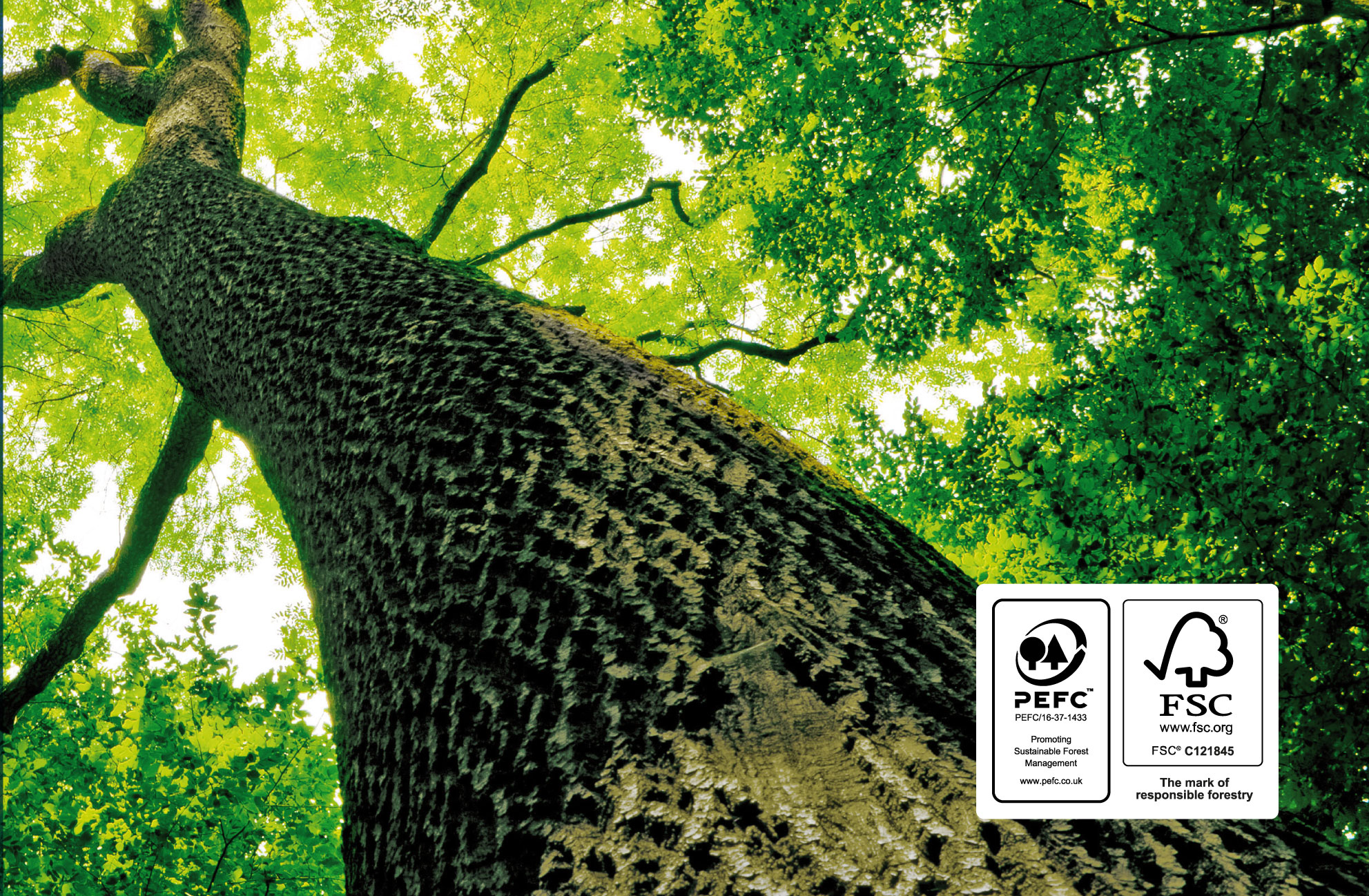 environmental image including FSC and PEFC logos